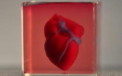Bayer to test new drugs on 3D-printed heart tissue at Tel Aviv University