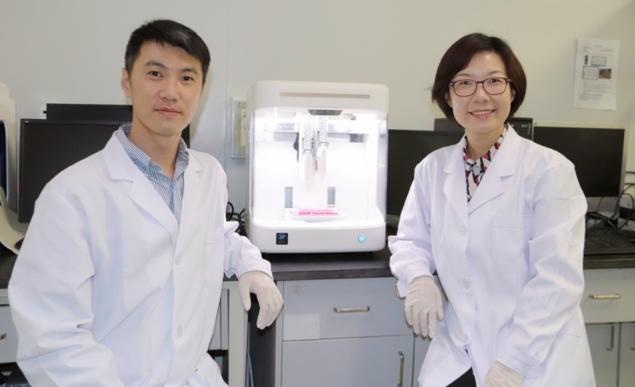 3D printed brain model shows potential for drug testing