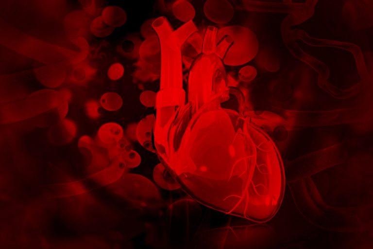 3D printing technique differentiates stem cells into heart cells