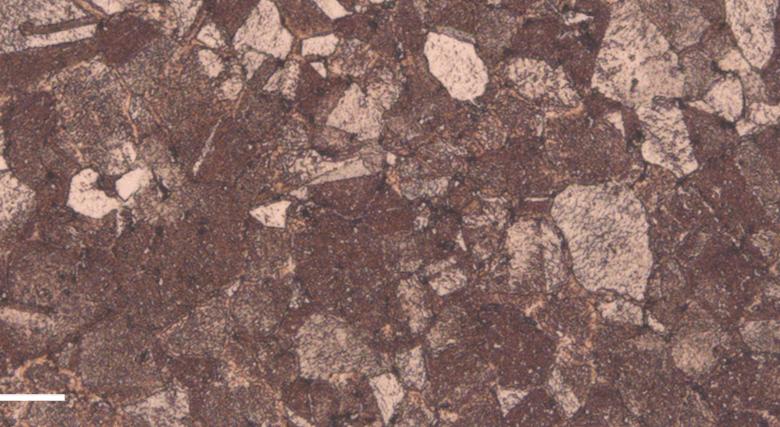 Desktop Metal adds copper to Studio System materials